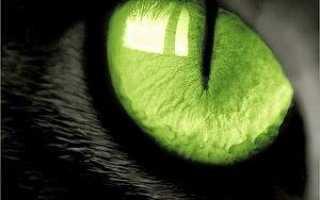 Кошачий глаз в эзотерике – история, полезные свойства и описание камня