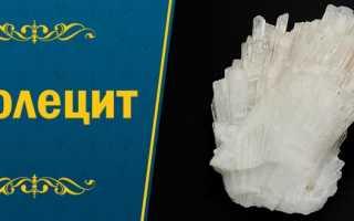 Сколецит – история, полезные свойства и описание камня